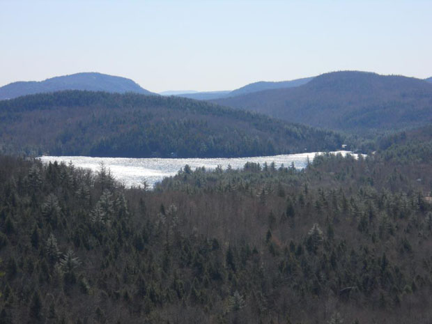 view from Maggie's Nature Park
